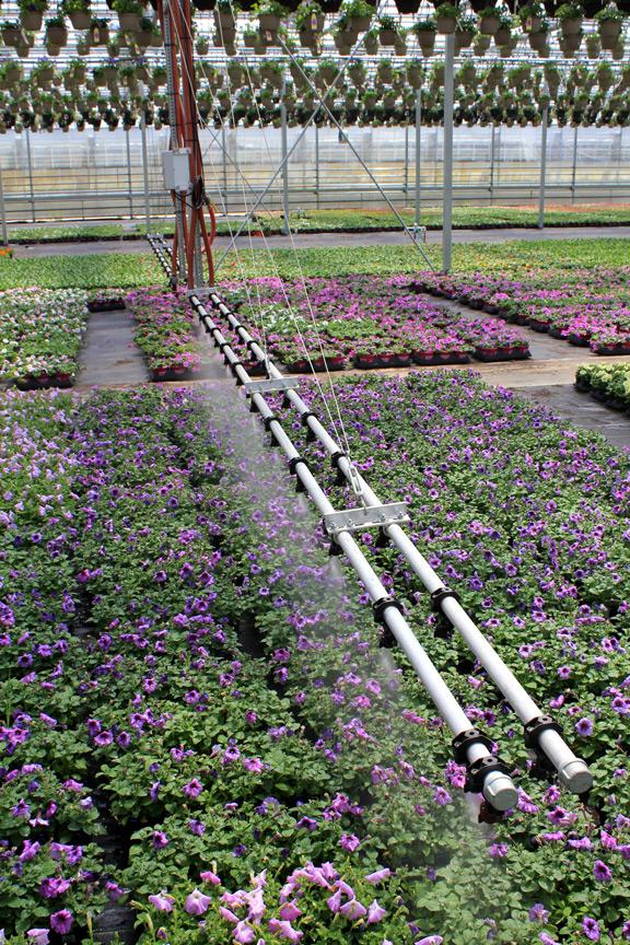 Low Pressure Boom Irrigators For Greenhouse Cherry Creek