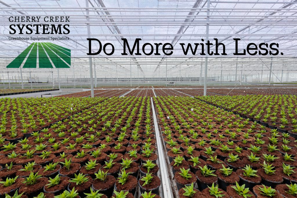 CCS Do more with less